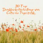dankbarkeit-challenge-caterina-pogorzelski